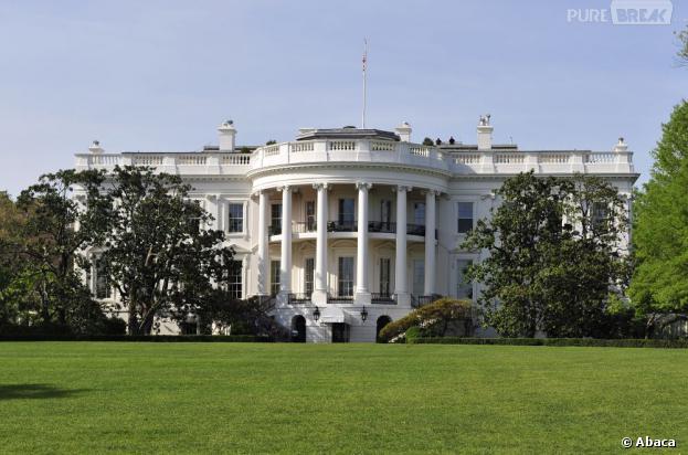 Le compte piraté de l'Associated Press annonçait un attentat à la Maison Blanche
