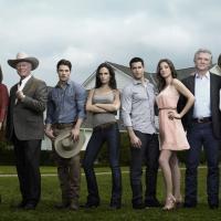 Dallas saison 1 : Jesse Metcalfe et TF1 font un bide d'audiences face à Patrick Sébastien