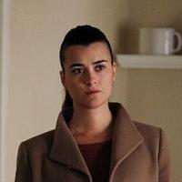 NCIS saison 11 : Cote de Pablo (Ziva) quitte la série (SPOILER)