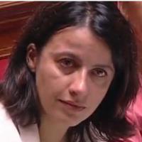 Cécile Duflot en larmes à l'Assemblée après le tweet polémique de son compagnon