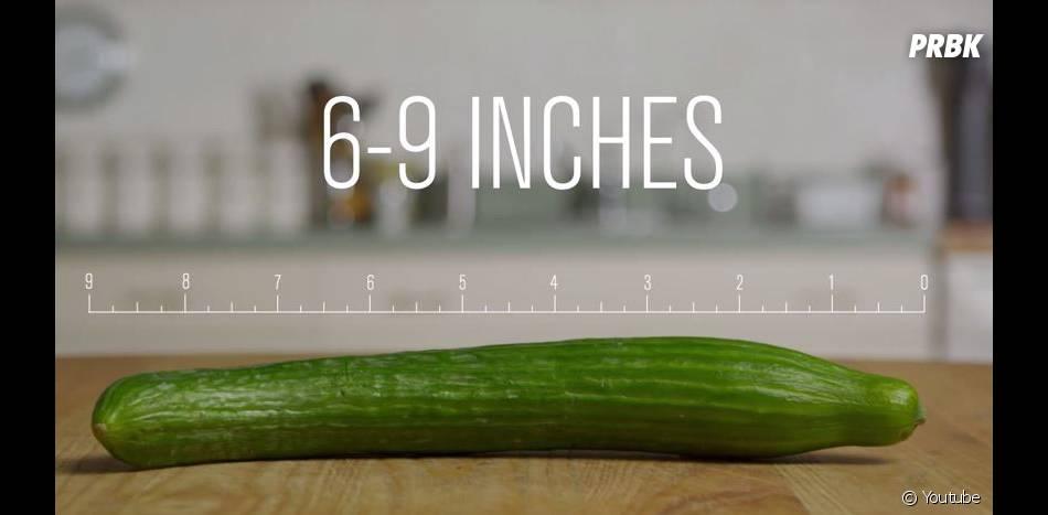 Porno VS réalité : la taille du sexe d'une star du X est comprise entre 15 et 22cm