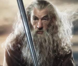 Le Hobbit 2 - la désolation de Smaug : votez pour votre affiche préférée