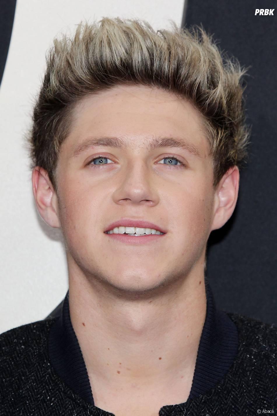 Niall Horan à l'avant-première du film des One Direction This is Us à New York le 26 août 2013
