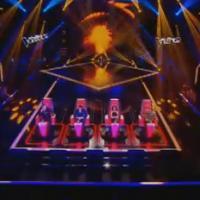 """The Voice 3 : Ginie Line, Douchka... les candidats """"célèbres"""" de cette saison"""