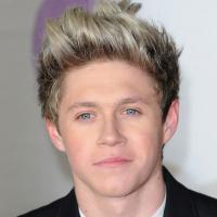 Niall Horan sorti de l'hôpital : il supplie les Directioners de ne pas le harceler