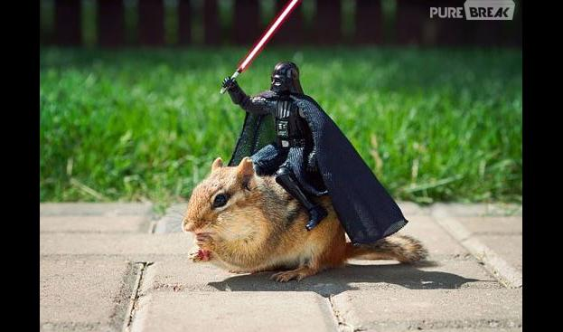 star wars chipmunk