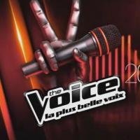 The Voice : Stephan Rizon, Nuno Resende... come-back des anciens pour la tournée
