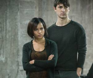 Divergente : Will et Cristina