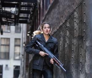 Divergente : Shailene Woodley sur une image