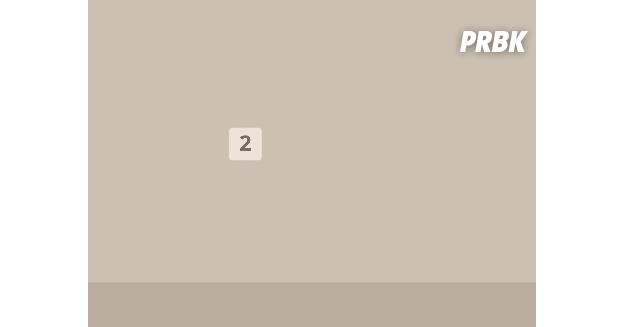 flappy bird et 2048 dans un seul jeu : flappy 48