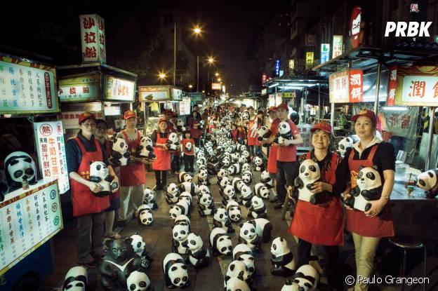 pandas sur un marché