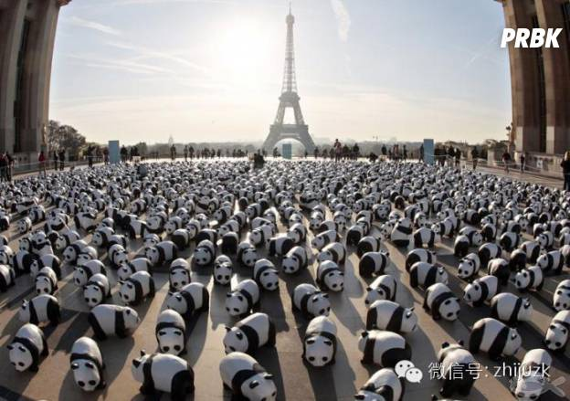 panda Paris