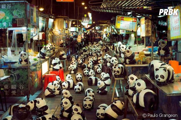 pandas marché