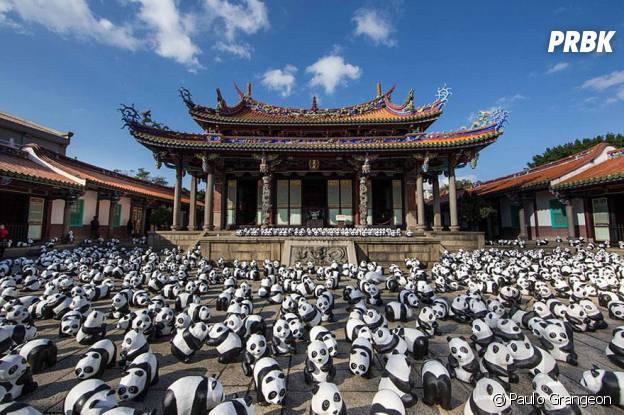 pandas temple