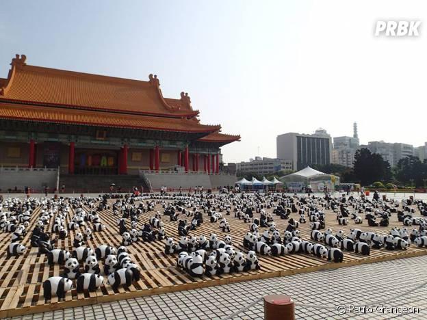 pandas grand place