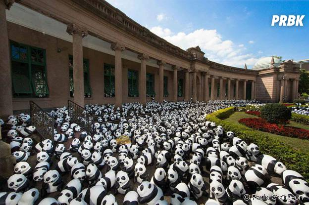 pandas jardin