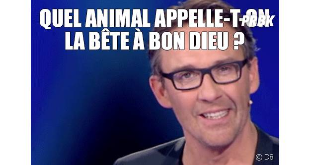 Julien Courbet : les pires fails du Maillon Faible