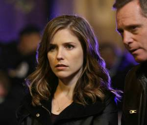 Chicago Police Department saison 1 : Sophia Bush au casting