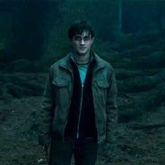 Harry Potter : une fac utilise le sorcier pour des cours... d'éducation sexuelle