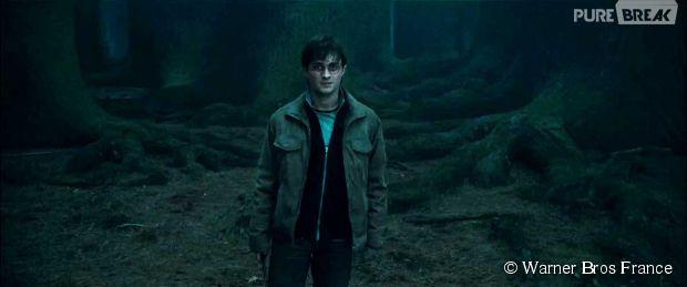 Harry Potter : le monde de Poudlard utilisé pour des cours d'éducation sexuelle