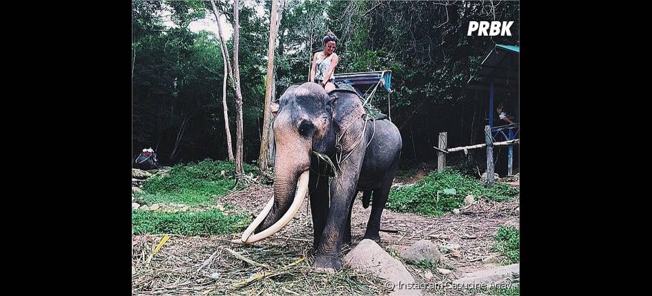 Capucine Anav : balade en éléphant pendant ses vacances