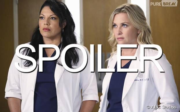 Grey's Anatomy saison 12 : quel futur pour Callie et Arizona ?