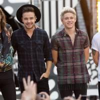 """Harry Styles responsable de la """"séparation"""" des One Direction ?"""