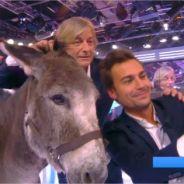 Matthieu Delormeau et Bertrand Chameroy hypnosés : selfies avec un âne qu'ils prennent pour Rihanna
