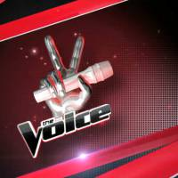The Voice USA : un candidat bluffant remporte la finale américaine