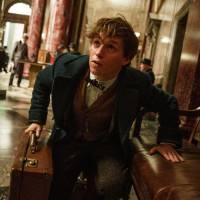 Harry Potter : les méchants du spin-off dévoilés ? Ce qu'il faut savoir