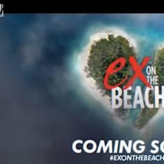 Ex On The Beach : la télé-réalité de MTV UK bientôt adaptée sur NRJ 12 ?