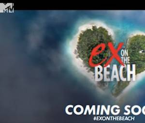 Ex On The Beach bientôt sur NRJ 12?