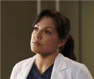 Grey's Anatomy saison 12 : un tweet de Sara Ramirez sème la panique chez les fans de la série