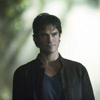 The Vampire Diaries saison 8 : Damon bientôt humain avec Elena ?