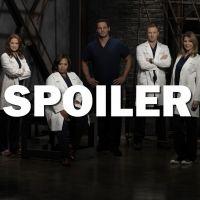 Grey's Anatomy saison 13 : Alex en prison après l'épisode 10 ? Voici la réponse
