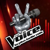 The Voice : un nouveau coach en approche dans l'émission ?