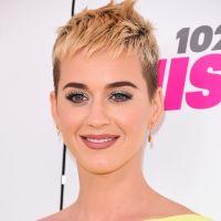 Katy Perry fatiguée que Niall Horan la drague ? L'ex One Direction lui répond avec humour
