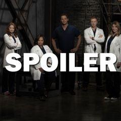 Grey's Anatomy saison 14 : une actrice quitte la série