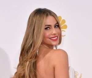 Sofia Vergara (Modern Family) : 41 500 000 millions de dollars