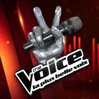 The Voice 7 : la date de diffusion dévoilée ! Adieu les battles