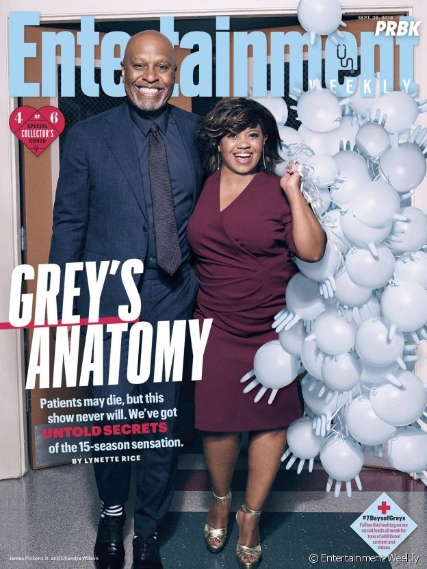 Grey's Anatomy saison 15 : la couverture spéciale avec Chandra Wilson (Bailey) et James Pickens Jr (Richard)