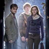 Harry Potter : des cours de droit inspirés de l'univers du sorcier en Inde