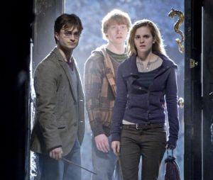 Harry Potter : une université indienne va donner des cours de droit inspirés de l'univers du sorcier.