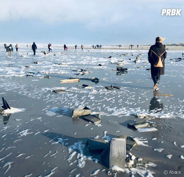 Des petits poneys s'échouent sur la plage de la mer du Nord
