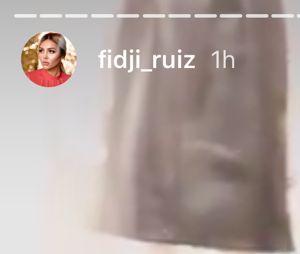 Fidji Ruiz (Les Princes et le princesses de l'amour 2) et Dylan en couple : ils ne se cachent plus