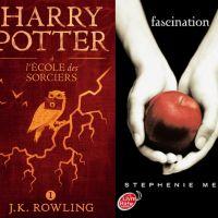 """Des livres Harry Potter et Twilight jugés """"sacrilèges"""" et brûlés par des prêtres polonais"""