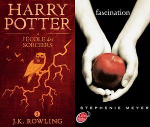 """Des livres Harry Potter et Twilight brulés par des prêtres polonais pour """"sacrilège""""."""