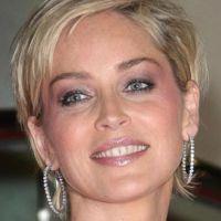 New York Unité Spéciale ... l'épisode avec Sharon Stone diffusé en France le ...