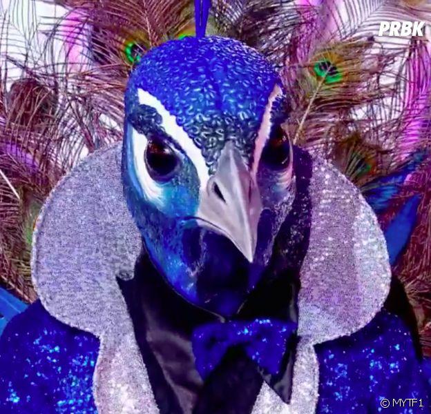 Mask Singer : qui est le paon ? Les indices qui dévoilent son identité