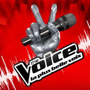 The Voice : les coachs de la saison anniversaire dévoilés... et ils seront 5 !